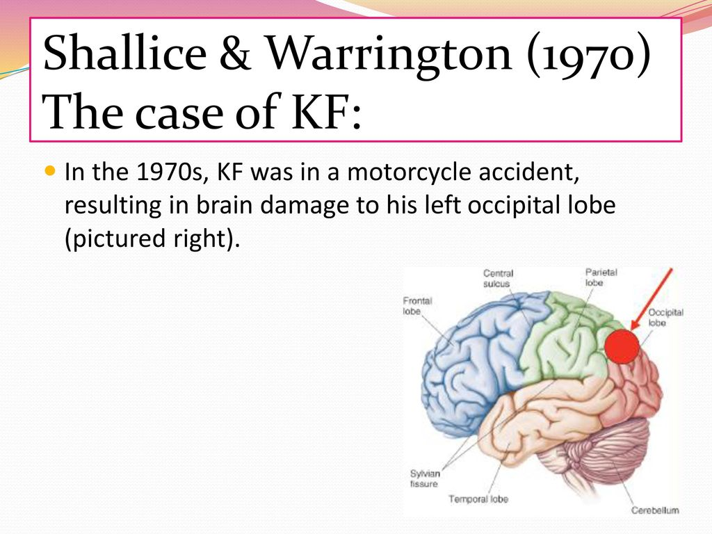 shallice & warrington 1970 kf case study